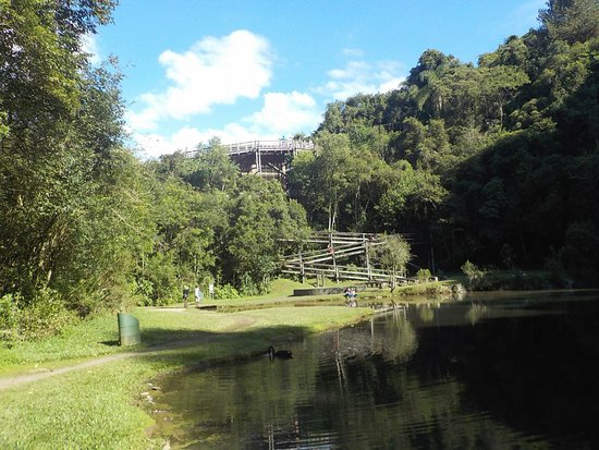 UNILIVRE Universidade Livre do Meio Ambiente: Andando pela trilha