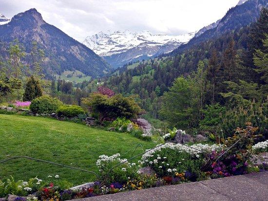 Haus Schonegg BnB: The view from the front door!