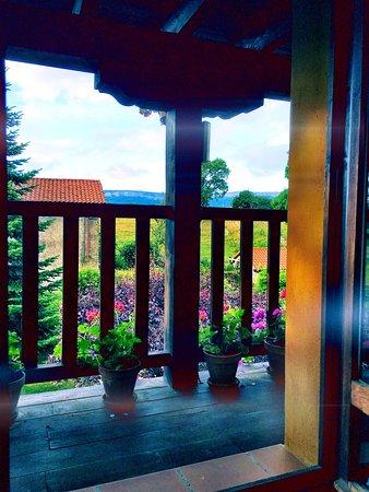 San Pelayo de Montija, Spanien: Room with a view