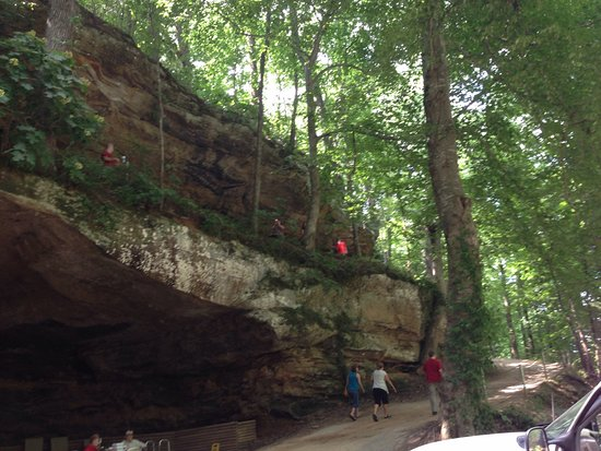 Tuscumbia, AL: Trail you can lookout from