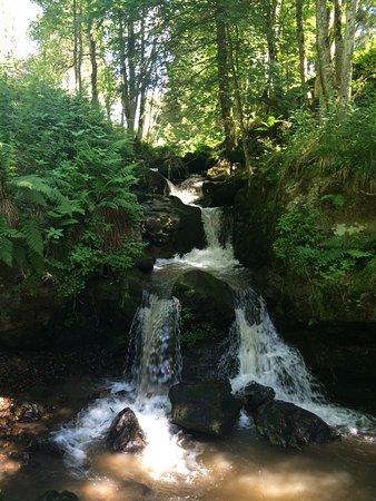 Todtnauberg, Deutschland: Todtnauer Wasserfall
