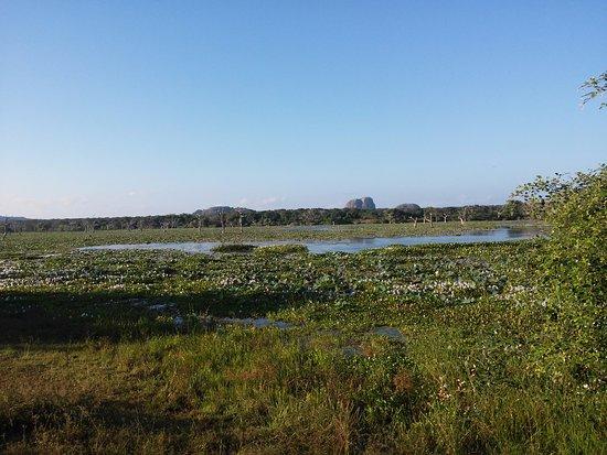 Tissamaharama, Sri Lanka: Paysage