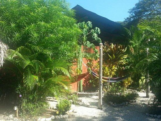 Hostel El Cactus: 20151211_094237_large.jpg