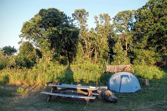 Starbuck, MN: Baby Lake Campsite