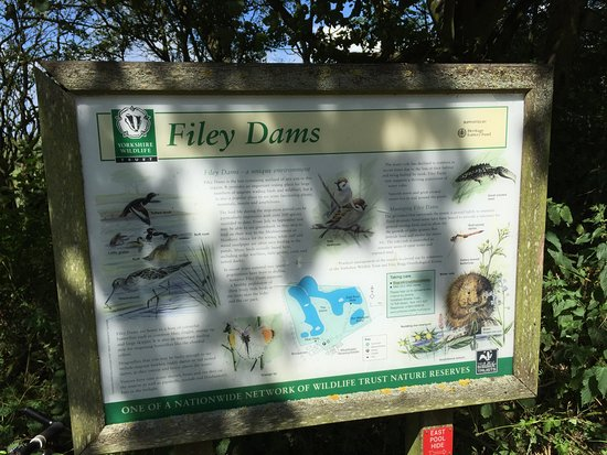 ‪Filey Dams Nature Reserve‬