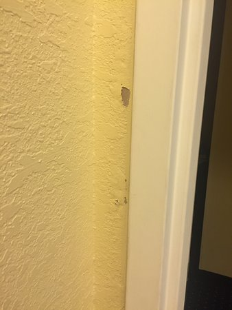 Port Saint Lucie, FL: Disgusting.No room/bathroom should look/smell of mildew.Paint chipping off walk,better bathrooms