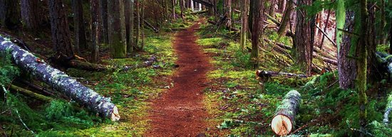 Squamish, Kanada: Trails for all abilities