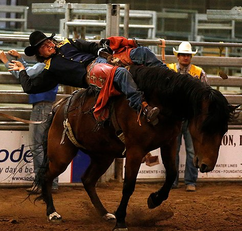 Chance Englebert takes a ride in the Bareback event at Cheyenne Frontier Days