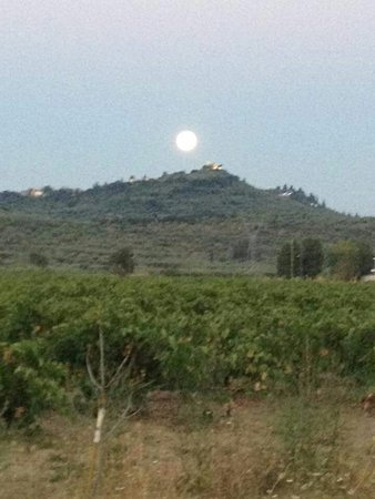 Meso Gerakari, Griechenland: Fioro Tou Levante