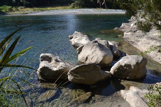 Murchison, นิวซีแลนด์: Buller River