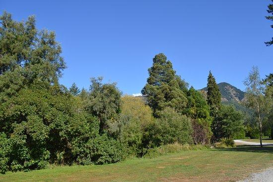 Murchison, New Zealand: green, green grass