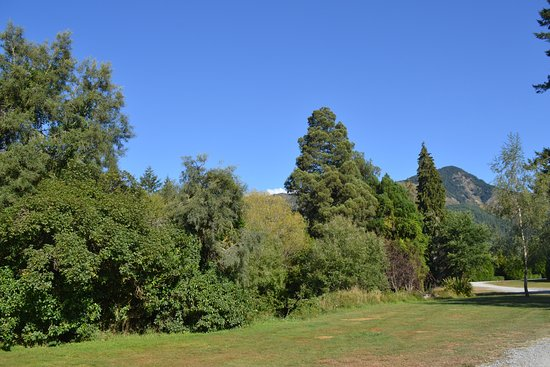 Murchison, Νέα Ζηλανδία: green, green grass