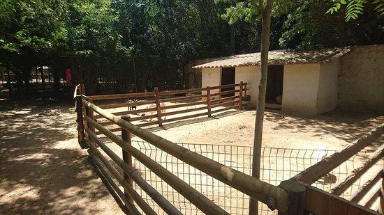 Auriol, Frankrike: Enclos des chèvres