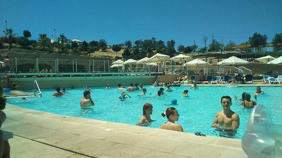db Seabank Resort + Spa: DSC_0343_large.jpg