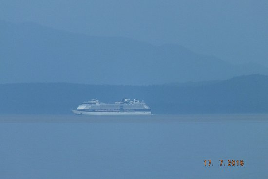 Bowser, Canada: So many cruise ships sailing by!