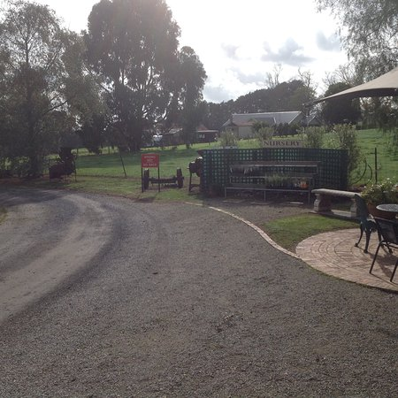 Wandin North, Australia: Some of the outdoor seating near the cafe.