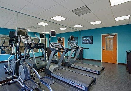 Romulus, Μίσιγκαν: Fitness Center