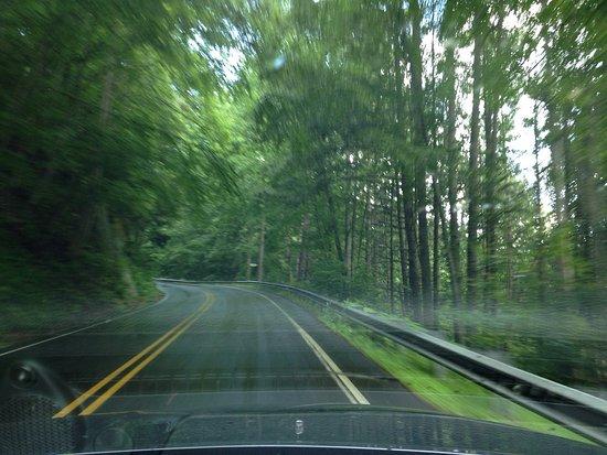 Waynesville, Kuzey Carolina: photo4.jpg