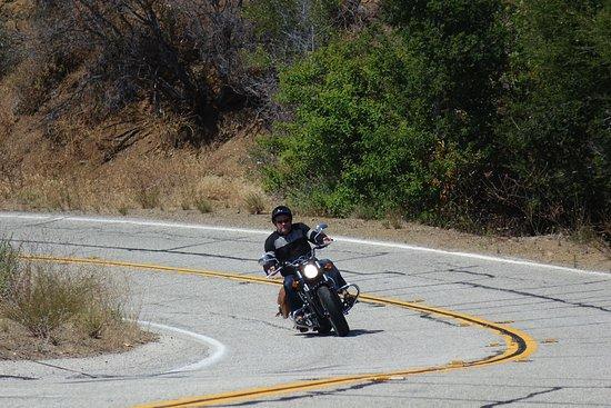 Beverly Hills, CA: Cruising längs dom slingra vägarna på Mulholland Hwy