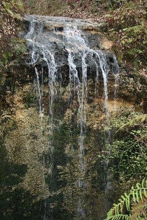 Waterfall at Falling Waters State Park in Chipley, Florida