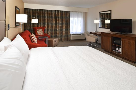 Carbondale, IL: King Room with Sofabed