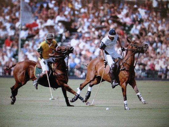 Wellington, Флорида: International Polo Match