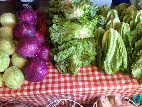 Kamuela, HI: The island best produce