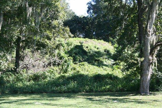 "Lake Jackson Mounds Archaeological State Park: The massive platform or ""temple"" mound at Lake Jackson Mounds."