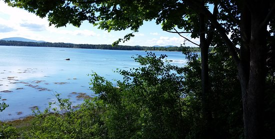 Trenton, ME: from our site camping