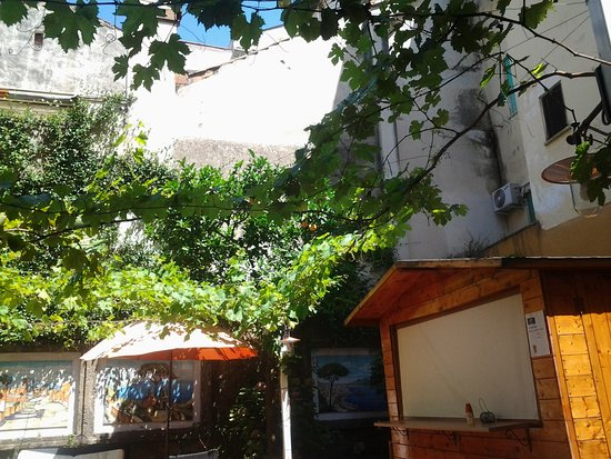Astoria Hotel: The garden with orange trees and grape vines
