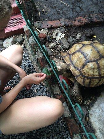 Granada, Nicaragua: Feeding him