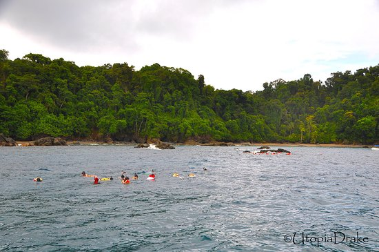 Drake Bay, Costa Rica: Snorkeling, Caño Island
