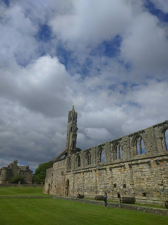 St Andrews Cathedral: IMG_20160721_123023_large.jpg