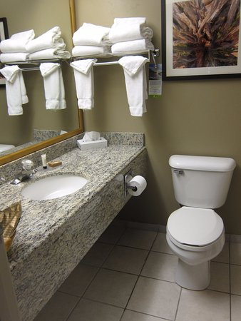 Gray Wolf Inn and Suites: Bathroom View