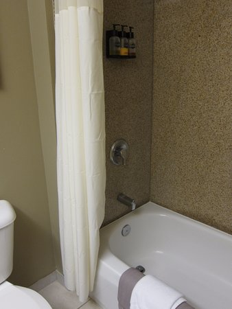 Gray Wolf Inn and Suites: Tub/Shower