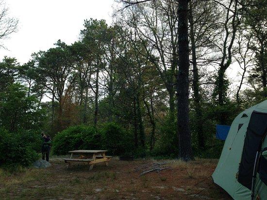 Nickerson State Park Campgrounds: Le site juste à côté du notre