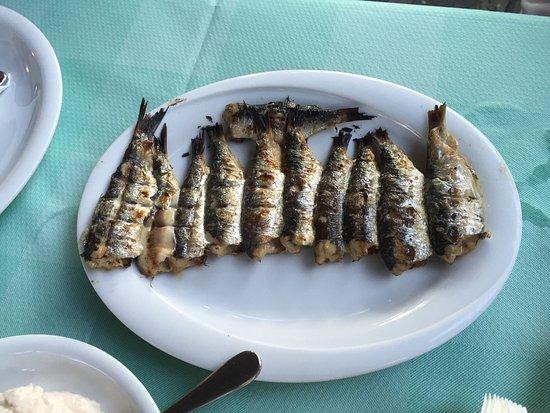 Greek Restaurant Near Natural History Museum