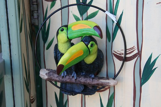 Edmonds, WA: Toucans