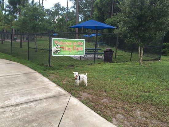Dr Phillips Community Dog Park