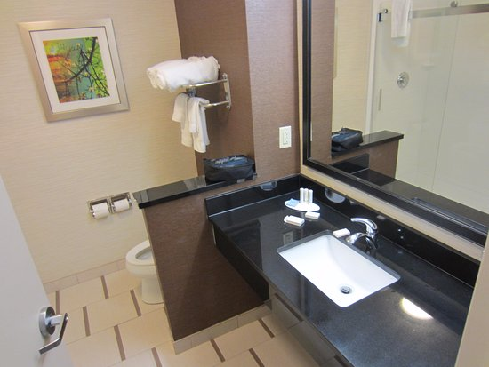 Meridian, MS: Clean and Spacious Bathroom - Bonus points for Paul Mitchell and Tea Tree products