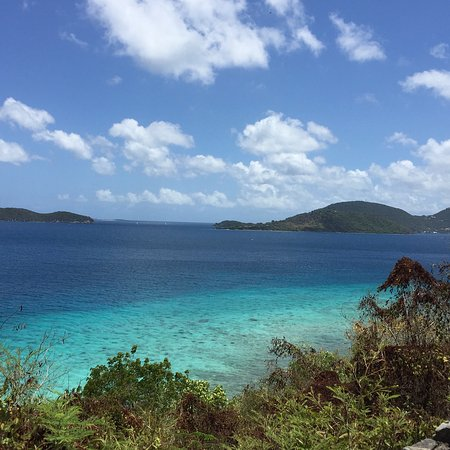 Tropic Tours : photo1.jpg