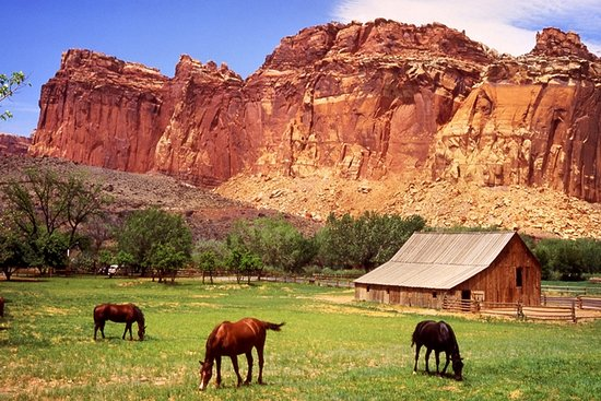 Whispering Sands Motel: Capitol Reef 35 minute drive