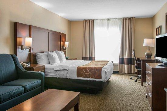 Comfort Suites Wixom: Guest Room