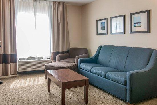 Wixom, Μίσιγκαν: Guest Room