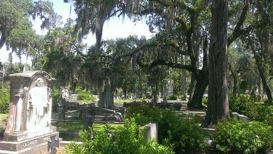 Bonaventure Cemetery Entrance