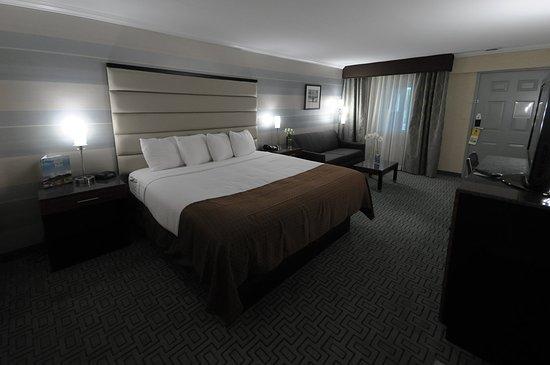 Plainview, Nova York: Comfortable, Clean, Crisp - King Sofa Bed Room