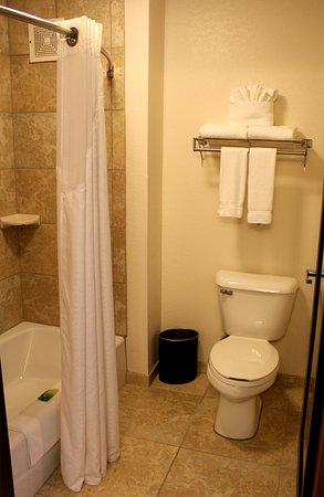 Houghton, MI: Guest bathroom