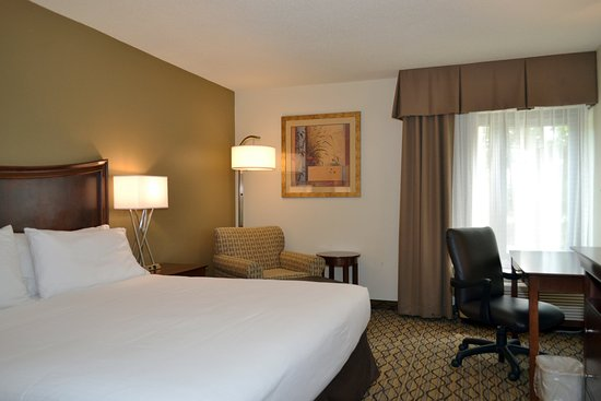 Brandon, FL: Newly renovated king rooms with fridge/micro combo