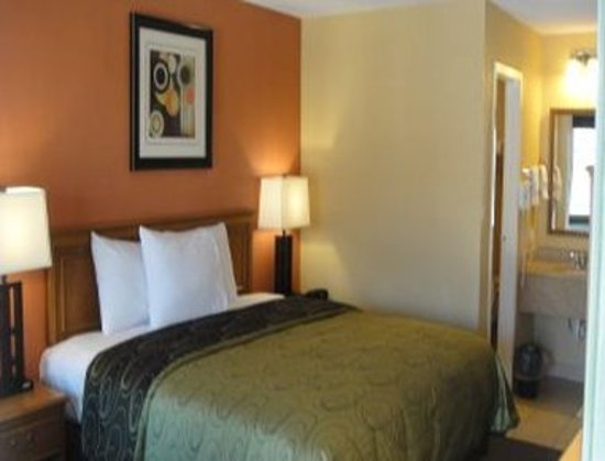 Knights Inn Arlington: Upgraded King Mini