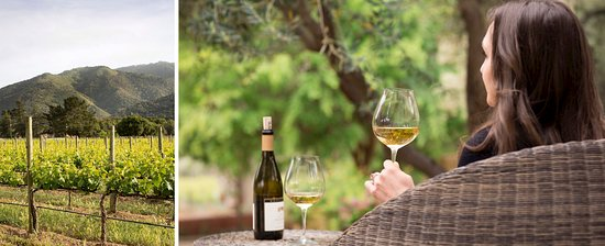 Carmel Valley, CA: Bernardus Lodge & Spa Estate Vineyard